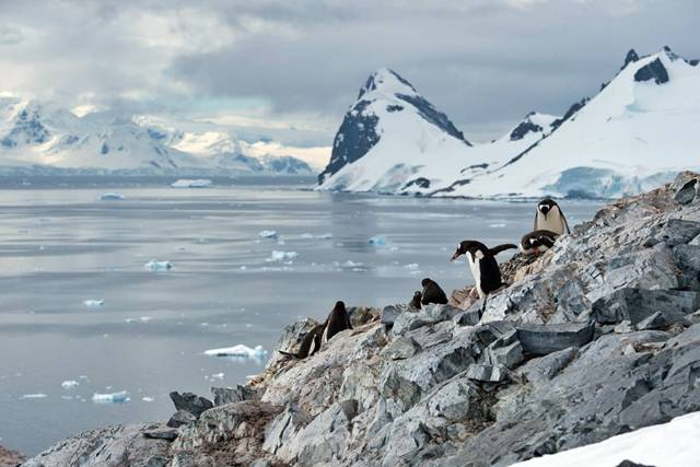 Scenery from the Antarctic Peninsula