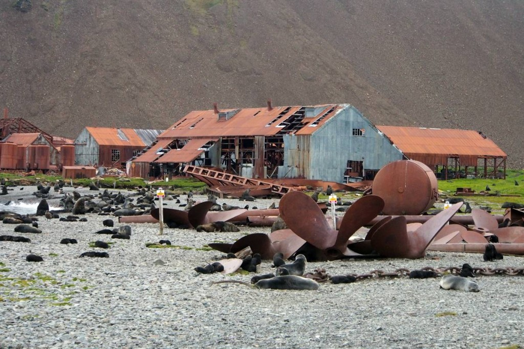 Deserted Stomness whaling station